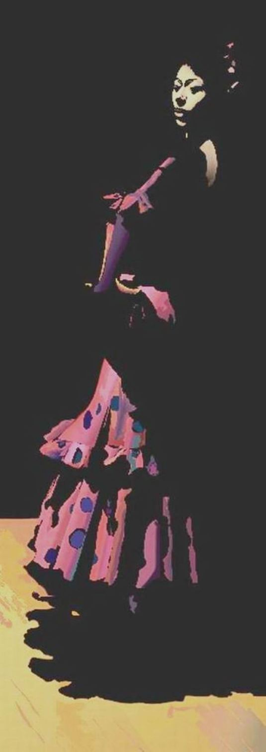 060.Wil Dawson-Flamencor
